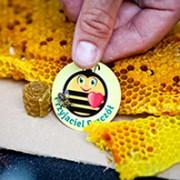 o-wielkim-dniu-pszczol